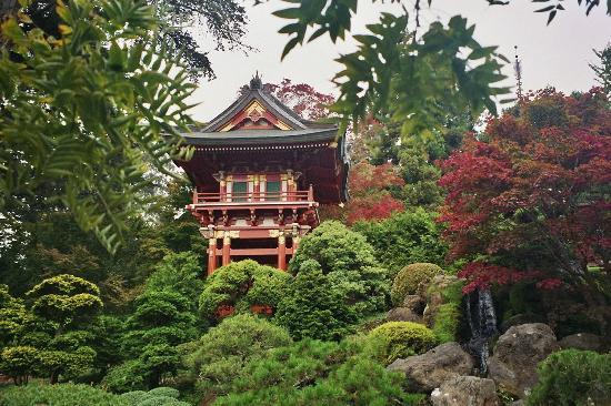Tea Gardens golden gate