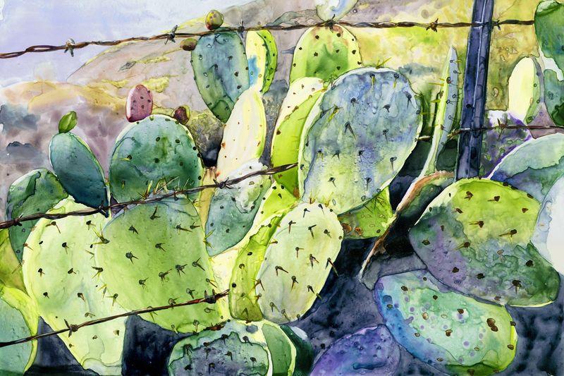 Cactus & Barbedwire (sm)